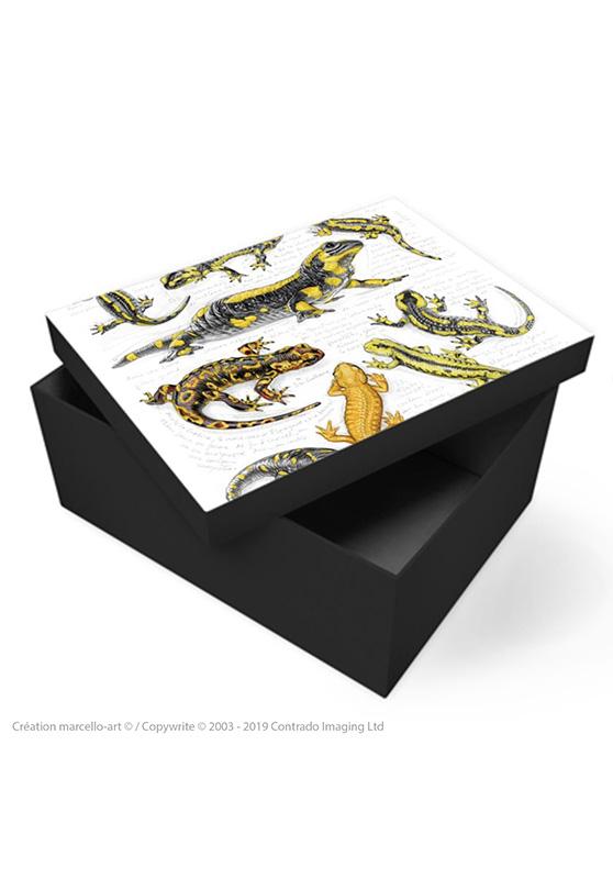 Marcello-art : Accessoires de décoration Boîte à souvenirs 383 salamandre