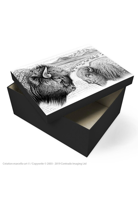Marcello-art : Accessoires de décoration Boîte à souvenirs 390 bison