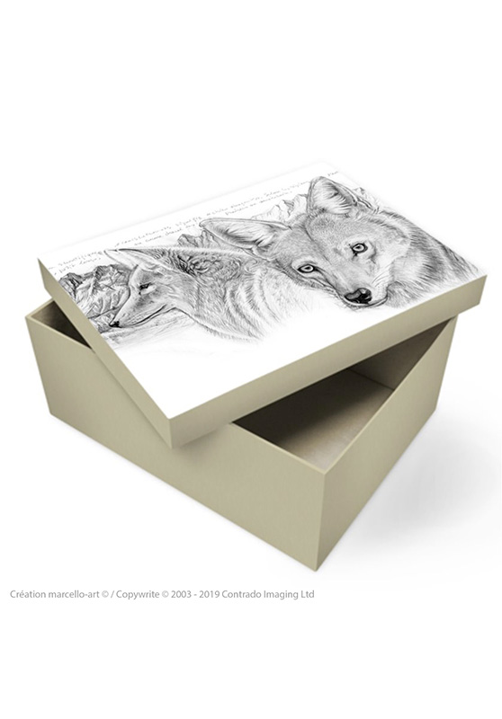 Marcello-art : Accessoires de décoration Boîte à souvenirs 391 coyote