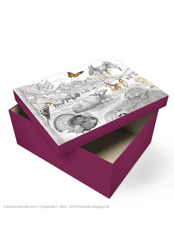 Marcello-art : Accessoires de décoration Boîte à souvenirs 393 faune Amérique