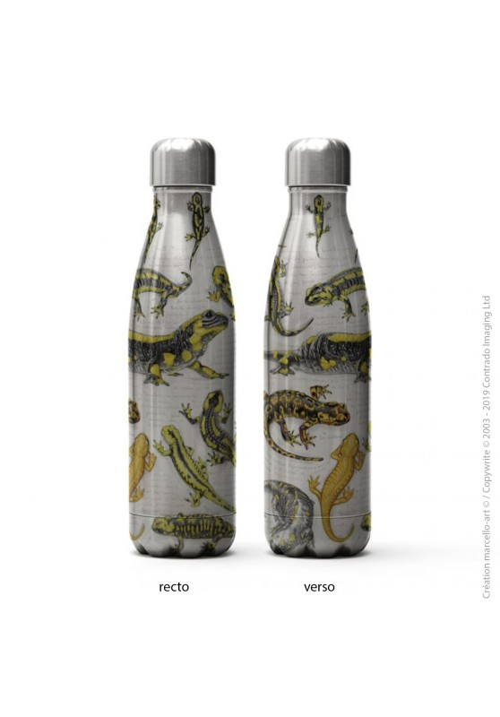 Marcello-art: Decoration accessoiries Isothermal bottle inox 383 salamander