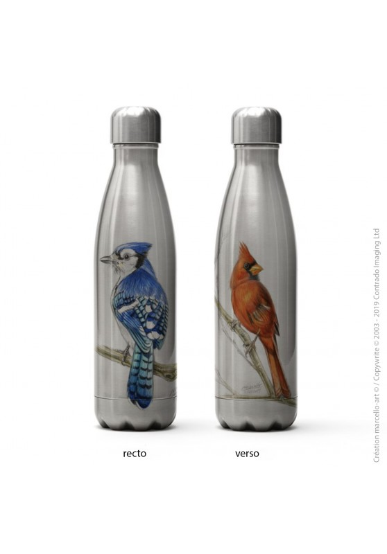 Marcello-art: Decoration accessoiries Isothermal bottle inox 393 blue jay & cardinal