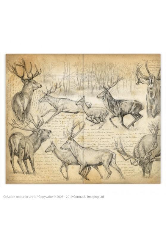 Marcello-art : Accessoires de mode Housse de couette 271 cerf elaphe