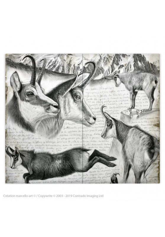 Marcello-art : Accessoires de mode Housse de couette 349 chamois