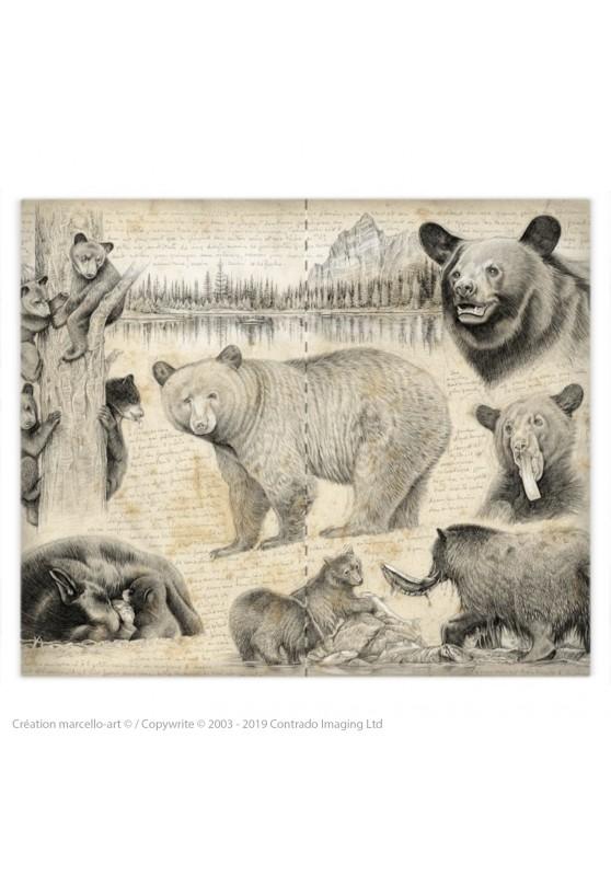 Marcello-art : Accessoires de mode Housse de couette 382 ours noir