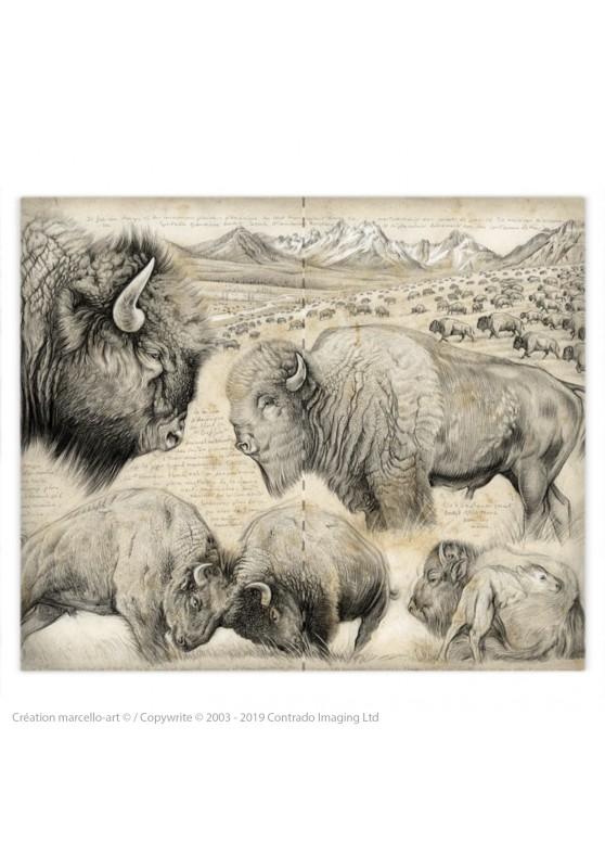 Marcello-art: Fashion accessory Duvet cover 390 American buffalo