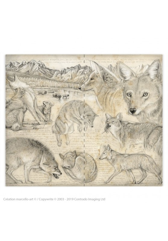 Marcello-art: Fashion accessory Duvet cover 391 coyote