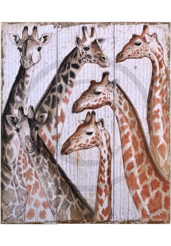 Marcello-art: African Wildlife 300 - Giraffe