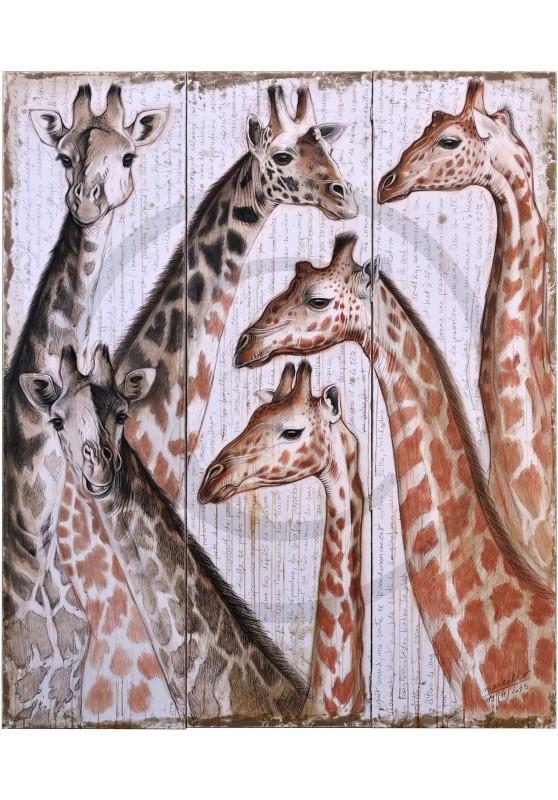 Marcello-art : Faune africaine 300 - Girafes