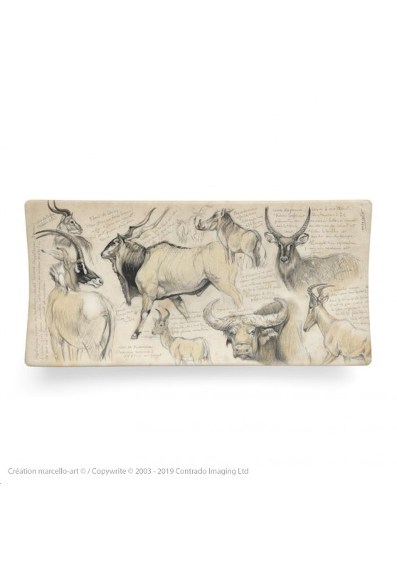 Marcello-art: Rectangular plates Rectangular plate 49 Fauna Cameroon