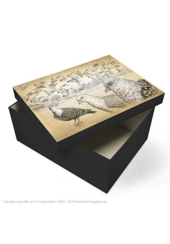 Marcello-art: Decoration accessoiries Souvenir box 232 Spot-winged Pigeon
