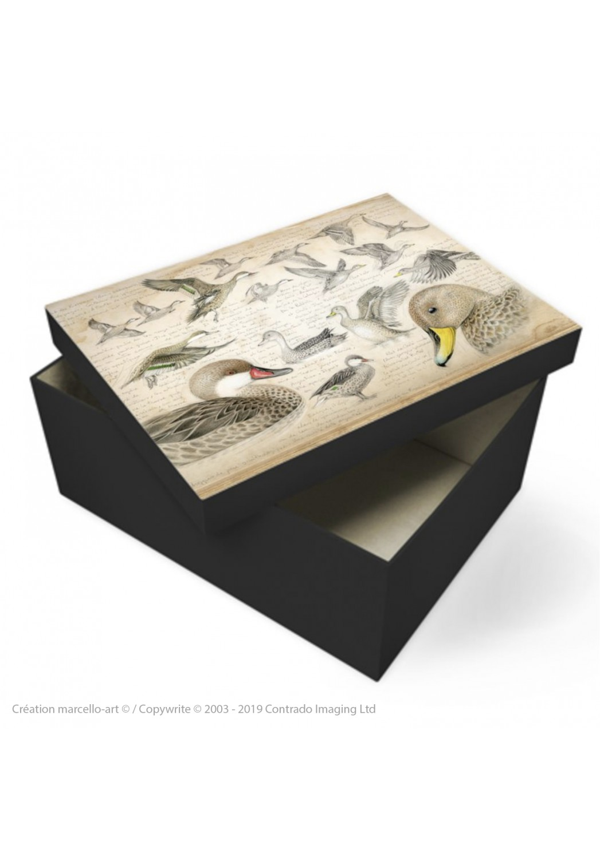 Marcello-art: Decoration accessoiries Souvenir box 234 White-cheeked pintail & Yellow-billed Pintail