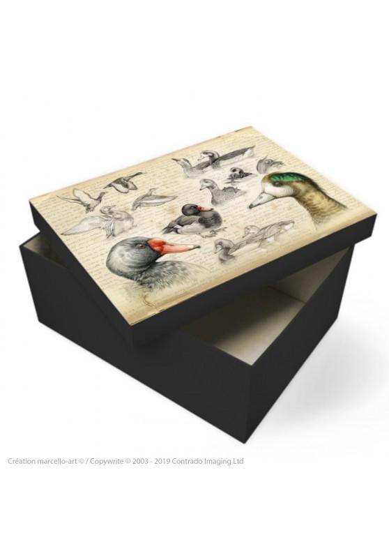 Marcello-art : Accessoires de décoration Boîte à souvenirs 236 Canard Siffleur du Chili et Nette demi deuil