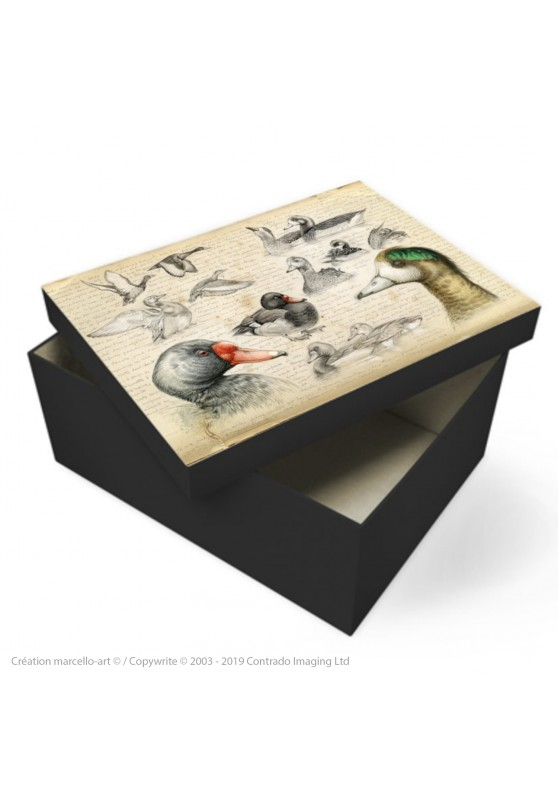 Marcello-art: Decoration accessoiries Souvenir box 236 Chiloé Wigeon & Rosy-billed Pochard