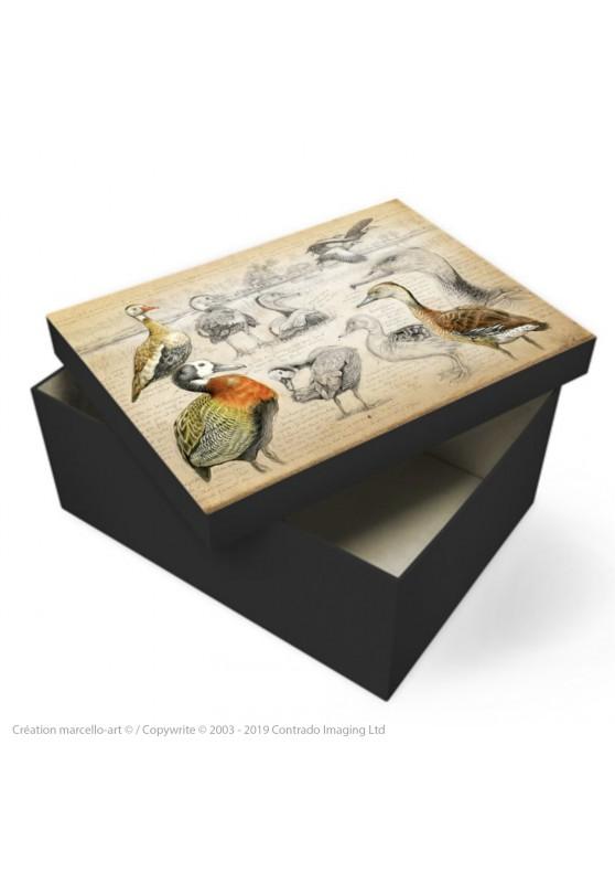 Marcello-art : Accessoires de décoration Boîte à souvenirs 237 Dendrocygnes ventre noir, veuf et fauve