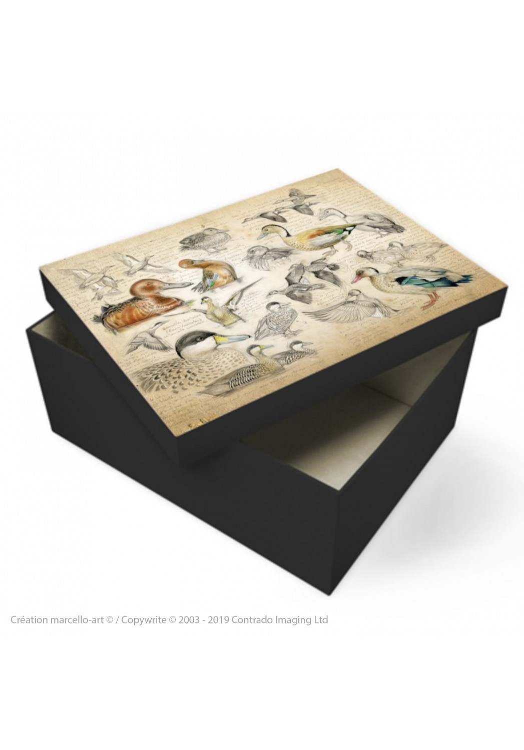 Marcello-art: Decoration accessoiries Souvenir box 239 Cinnamon teal, from Brazil, spotted and versicolor