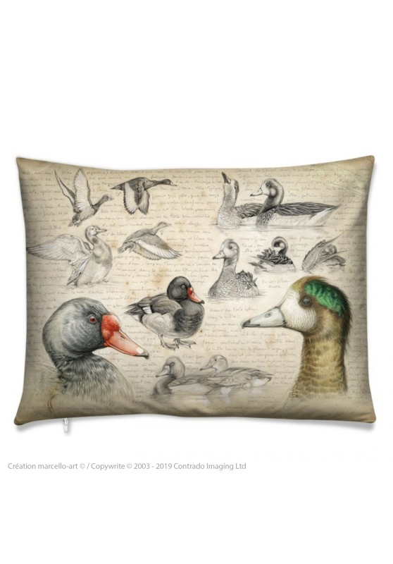 Marcello-art: Fashion accessory Cushion 236 Chiloé Wigeon & Rosy-billed Pochard
