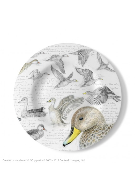 Marcello-art: Decorating Plates Decoration plates 234 White-cheeked pintail & Yellow-billed Pintail