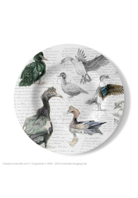 Marcello-art: Decorating Plates Decoration plates 238 Muscovy Duck & Knob-billed Duck