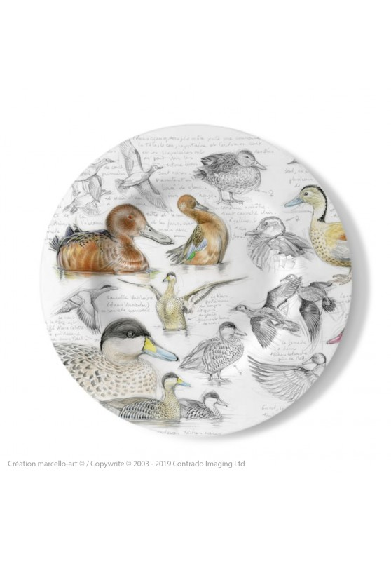 Marcello-art: Decorating Plates Decoration plates 239 A Cinnamon teal, from Brazil, spotted and versicolor