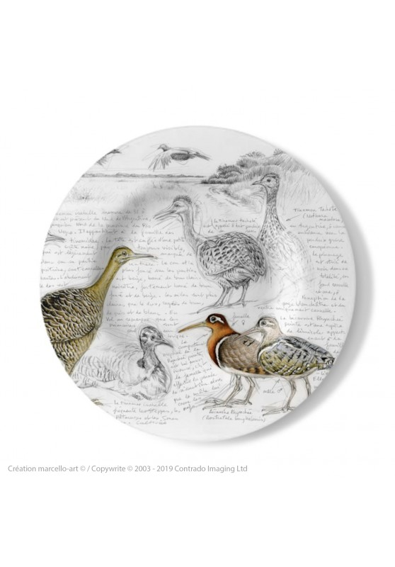 Marcello-art: Decorating Plates Decoration plates 240 Tinamou & Snipe