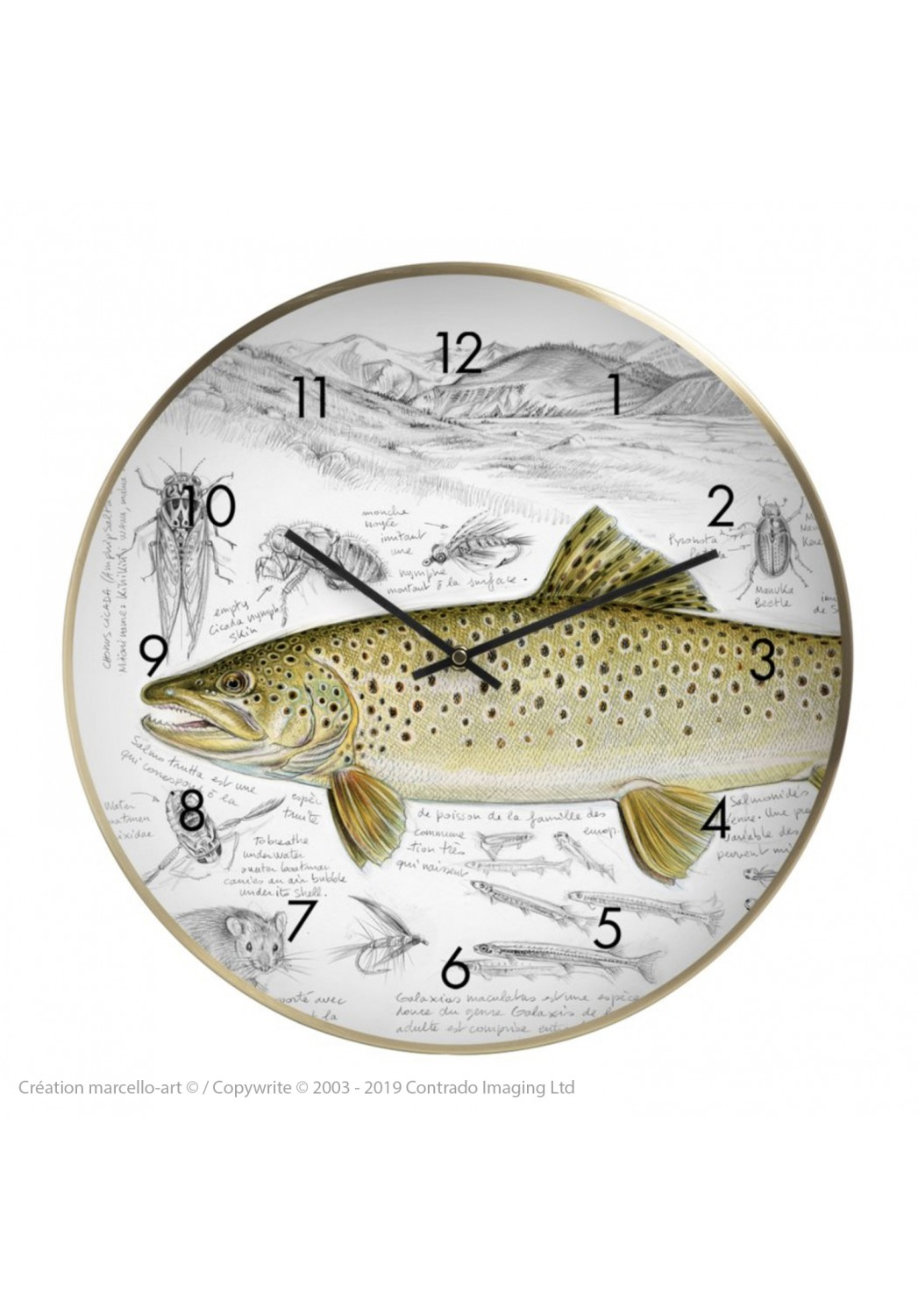 Marcello-art: Decoration accessoiries Wall clock 372 New Zealand Trout Fario