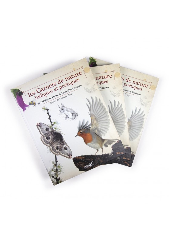 Marcello-art: Books 3 books Playful and Poetic Nature Notebooks