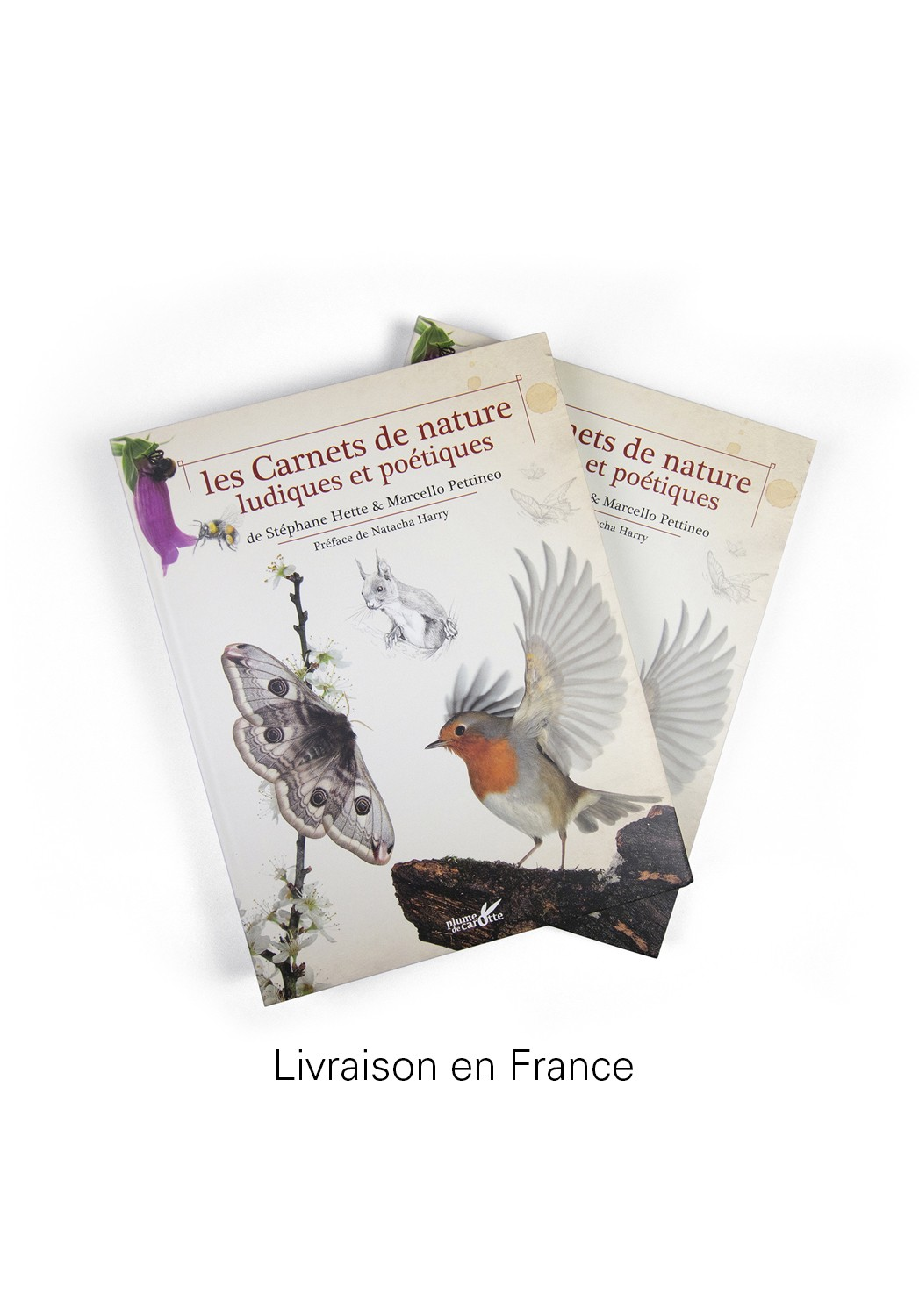 Marcello-art: Books 2 books Playful and Poetic Nature Notebooks delivery france