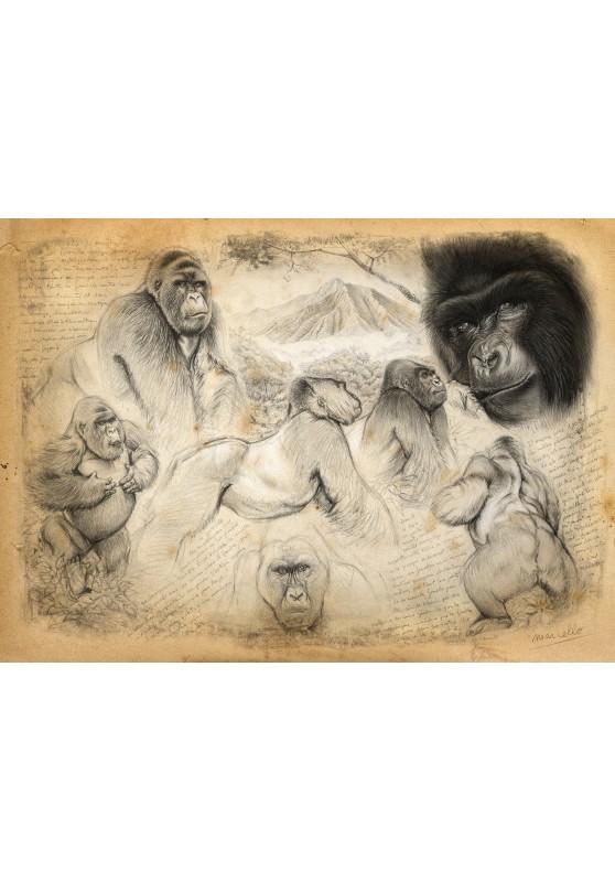 Marcello-art : Cartes de faire part 193 - Gorille de montagne