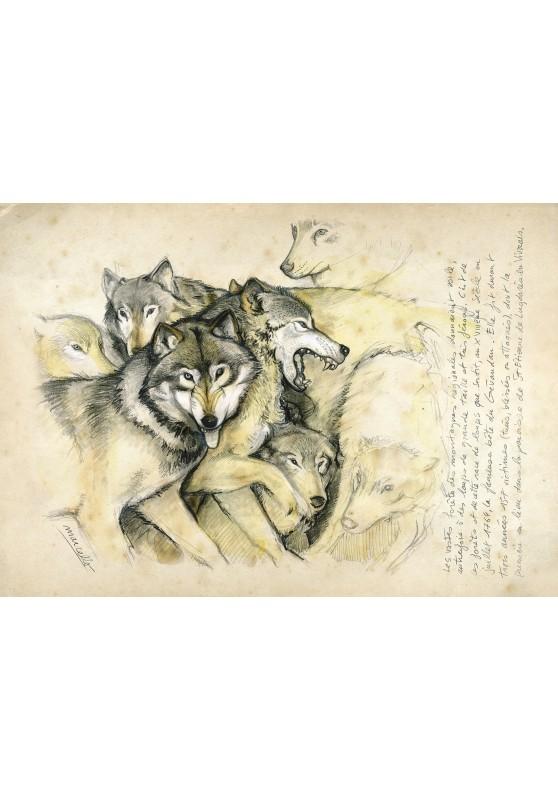 Marcello-art: Wish Card 25 - Wolf