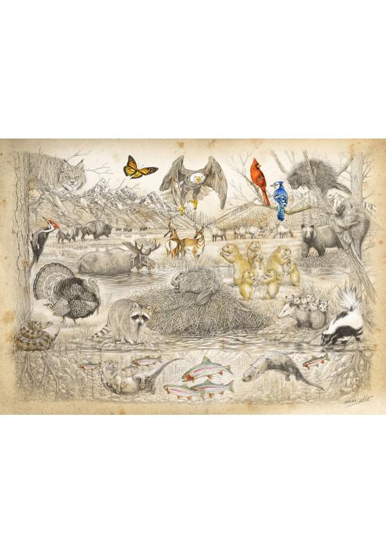 Marcello-art : Cartes de faire part 393 - Faune d'Amérique du nord