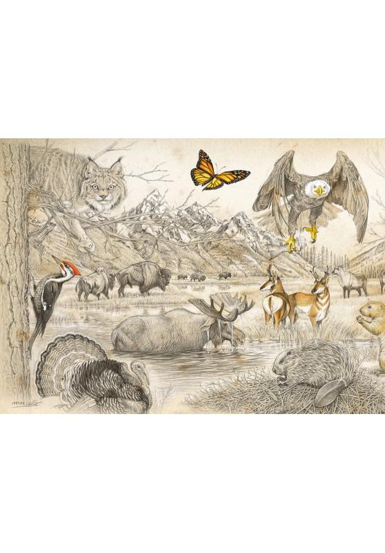 Marcello-art: Wish Card 393A - Wildlife North America