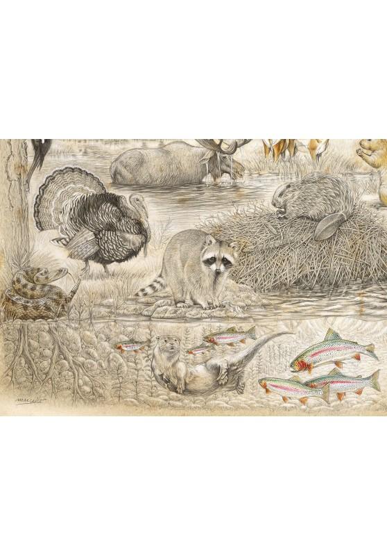 Marcello-art: Wish Card 393B - Wildlife North America