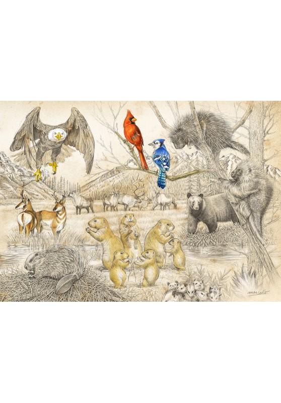Marcello-art: Wish Card 393C - Wildlife North America