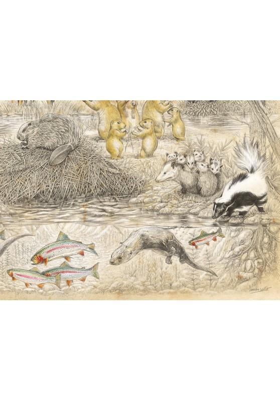 Marcello-art: Wish Card 393D - Wildlife North America