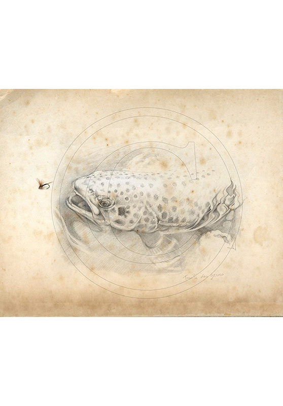 Marcello-art: Wish Card 46 - Trout of the Gaves