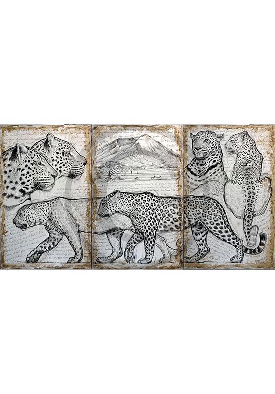 Marcello-art: Wish Card 296 - Triptyque kitumbeine leopard