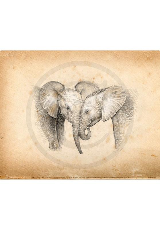 Marcello-art: Wish Card 325 - Baby elephants
