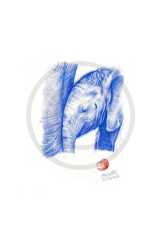 Marcello-art: Wish Card 356 - Baby elephant