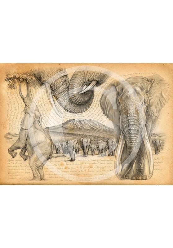Marcello-art: Exclusive work 196 - H&H Big Five Elephant