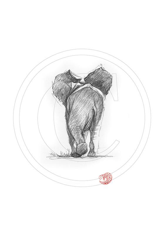 Marcello-art : Dessins au Bic 289 - Éléphanteau de dos