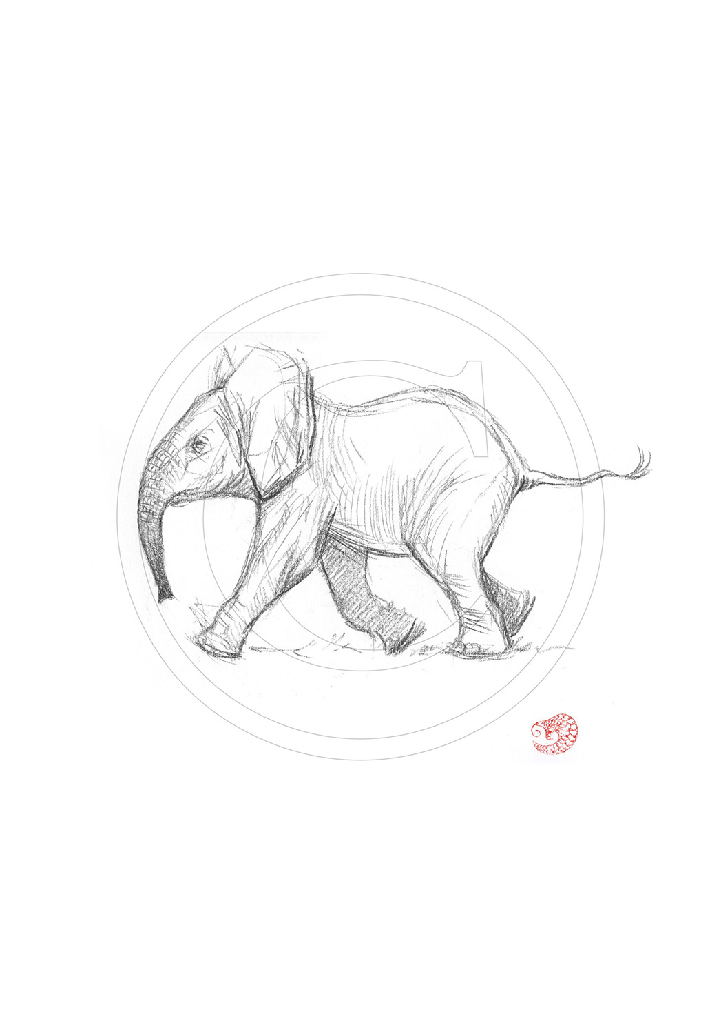 Marcello-art: Ballpoint pen drawing 291 - Baby elephant first steps