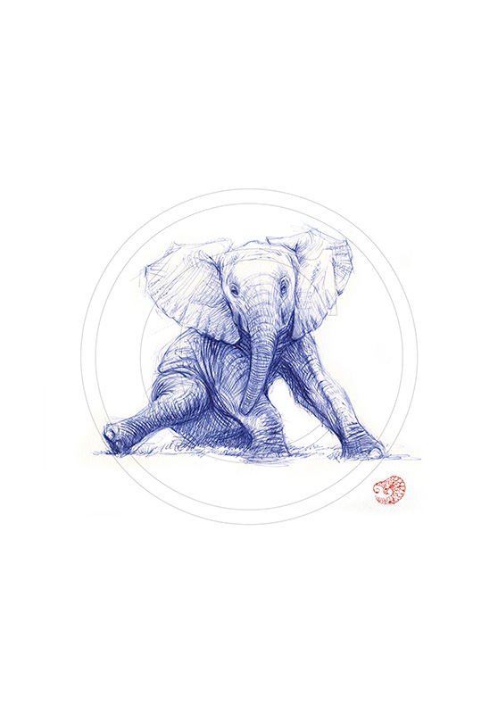 Marcello-art: Ballpoint pen drawing 292 - Baby elephant sitting