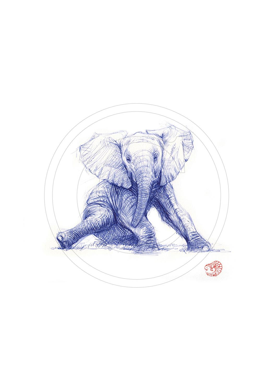Marcello-art : Dessins au Bic 292 - Éléphanteau assis