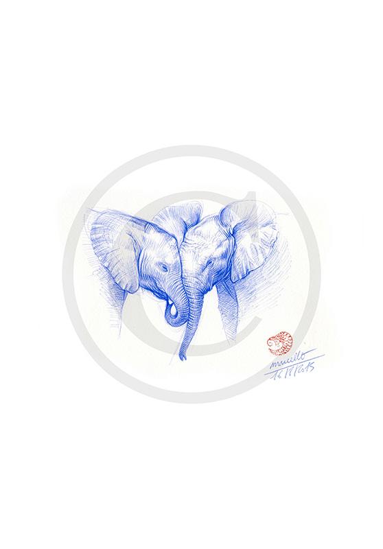 Marcello-art : Dessins au Bic 313 - Éléphanteau